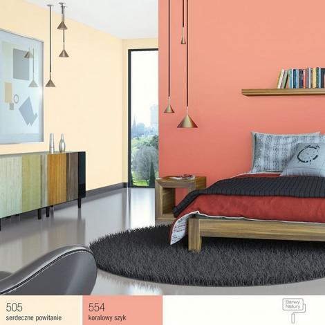 Odświeżona Kolekcja Farb śnieżka Barwy Natury Bk Business